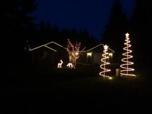 10 - Christmas Lights on the house!
