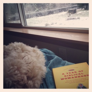 Puppy.Blanket.Book.Snow