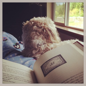 Snuggling with the puppy and a good book!