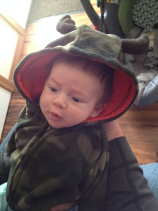 Camo baby! Ready for a walk!