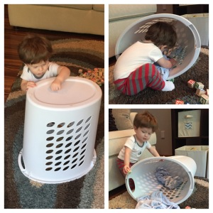Laundry baskets can be endlessly entertaining!
