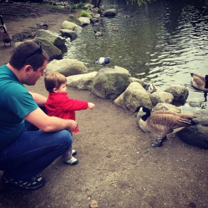 Feeding the birds at Granville Island