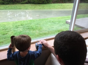 Remote control boat in the backyard pond