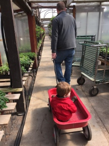 Helping Dad find the perfect hanging basket