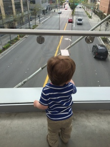 Enjoying the view from the Skybridge
