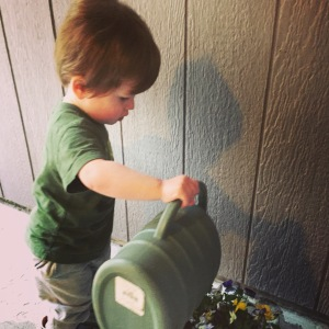 Watering Daddy's flowers