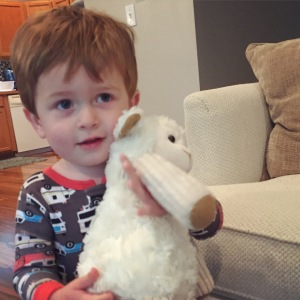 Owen and his new Lamby. My parents got Lamby a twin. We are breaking in the new guy now and then we'll switch them back and forth for even wear and tear!