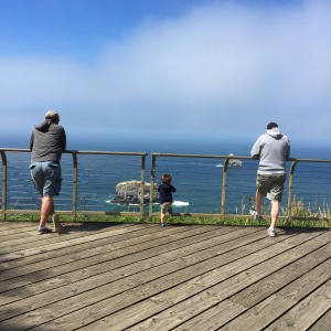 Enjoying the view at Cape Meares