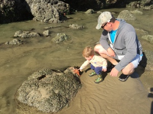 Tide pools at Haystack Rock