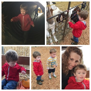 Visiting the farm with cousin Nolan