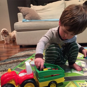 Carefully loading his cars into his tractor